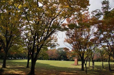 西部埋立第五公園2.jpg