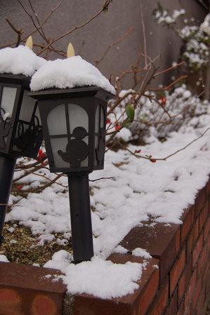 snow2015_01.jpg
