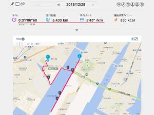 marathon151225_2